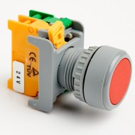 Pushbutton Momentary Switch 22mm Red with LED Lamp
