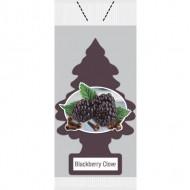 Little Trees Air Freshener - Blackberry Clove Vend Pack (72 Trees/Case)